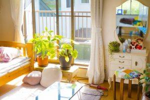 部屋に陽が射して、窓際に観葉植物が置いてある