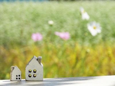 コスモス畑と小さいお家